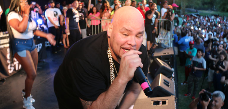 Fat Joe at the SummerStage Show - Crotona Park